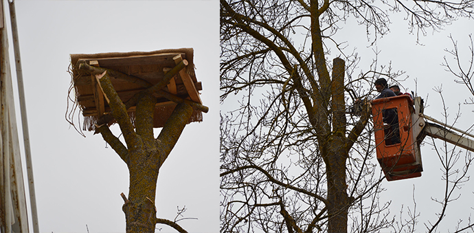 Ağaç Kurudu, Mahalle Sakinleri Yeni Platform Yaptılar