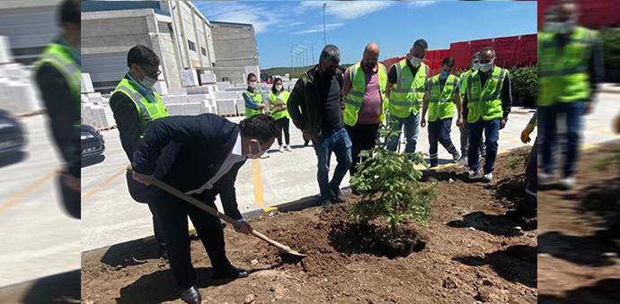 Havza OSB'de Ağaçlandırma Çalışması Yapıldı