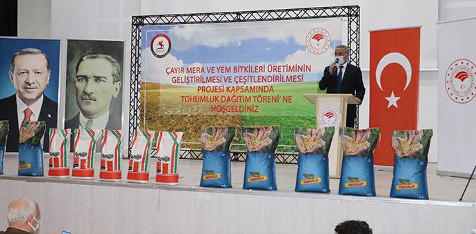 Havza'da Çiftçiye Yem Bitikleri Tohumu Dağıtıldı