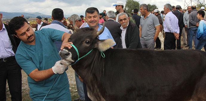 Havza'da Kurban Bayramı Tedbirleri Alındı