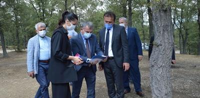 AK Parti Genel Başkan Yardımcısı Karaaslan Havza'da İncelemelerde Bulundu