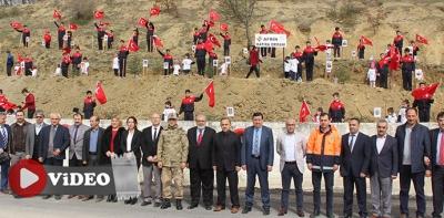 Havza MTAL, Afrin Şehitlerine Hatıra Ormanı-Video Haber