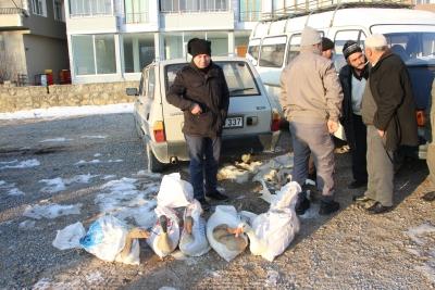 İlçemizde Tirit, Kaz Fiyatlarını Arttırdı